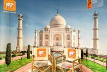 ITB 2016 / Indien Aktuell auf der ITB 2016 Halle 5.2b Stand 258