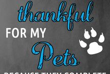 Thankful for Pets / So thankful for our beloved pets.