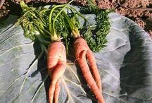 Zöldségek.!