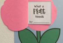 Teacher - Science Plants