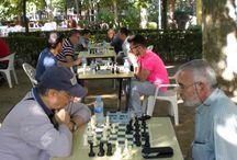 Torneo de ajedrez de San Roque 2015 / El 22 de agosto de 2015 a las 10:00 h. en el parque de la Alameda.