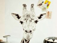Kamer roef dieren