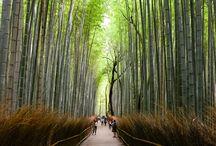 My Journeys - Japan