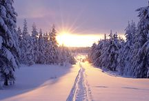 Winter Environment / Inspiration for Karu Talvi Project.