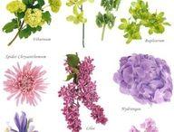 aranzacje kwiatowe