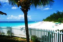Beautiful Barbados Vacation Ideas / Get to those unforgettable Barbados moments with this board. Each pin links back to its own PICFARI - a mapped out, self-guided photo tour packed with helpful information for any traveler to follow! From distillery tours to a mapped out tour of the rugged East Coast of the Island. Don't leave for this destination without your bathing suit, sunscreen and PICFARI to help you get the most out of your time in this tropical paradise