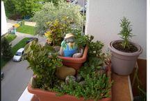zahradničení,pěstování