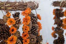 Thanksgiving ideas / by Ivona Sugarsticks Parties