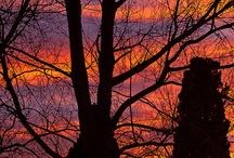 Mother Nature / by Lynita Stuart-Doig