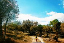 Autunno in Sardegna (for Kids)