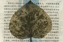временно. листья