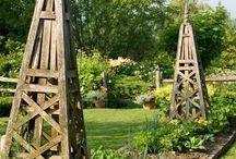West Wilson Garden / by Kate Hoffman