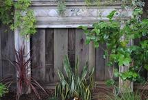 Victorian backyards