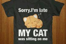 I  cats!