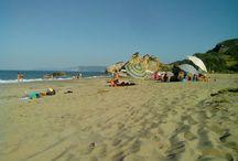 Potistika beach Pelion