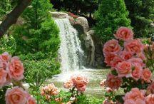 Bridges and water in the Garden