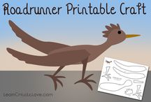R is for Roadrunner: Desert Dwellers Flashcards