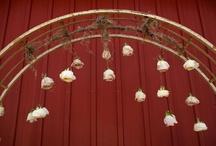 weddings... / by Nina Watts