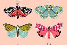 곤충일러스트