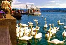 Destination: Switzerland