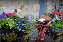 Container Gardening / 0