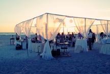 Beach Wedding / by Teddi Wessing