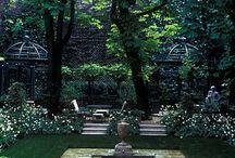 Garden / by Nadia Nel