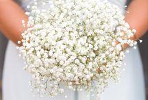 Bouquet y/o Ramos de Novia