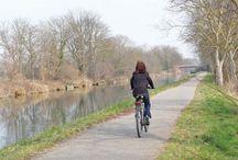 Les circuits vélo à tester en Alsace / En Alsace, une terre de vélo, il y a de quoi faire : la région compte 2 500 km de véloroutes et voies vertes mais aussi 900 km de sentiers balisés pour les VTT.