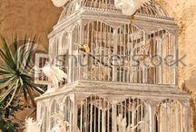 Ouvrez, ouvrez la cage aux oiseaux...