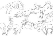 anatomia dibujos