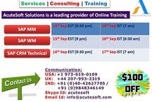Acutesoft Solutions Providing FREE ONLINE DEMO