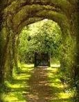 Portal Wonderland