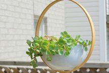 Eco Planting