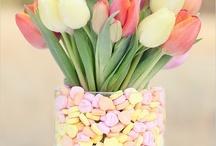 Colourful & Cute