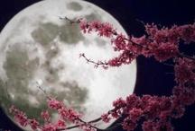 Moons...