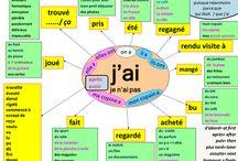 Eğitim francais