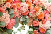 Jake and Erica's Wedding / Our color scheme involves coral, peach, blush, and gold. :) 06/01/19