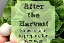 Fall preparation