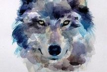 Wolf watercolour paintings