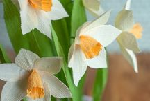 Papir virágok