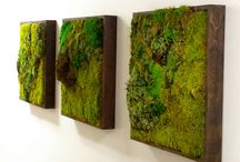 green picures, green walls