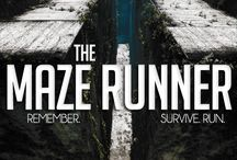 The Maze Runner '14 / by Marquee Cinemas