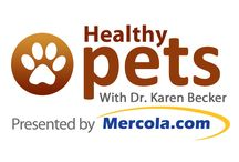 Foot Bath/Shampoo Recipes / Resources on why it is important to keep those paws and doggies clean.