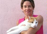 Pink House Cats / by Author D.R. Ransdell