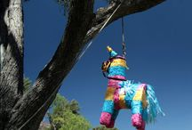 Party Adult Pinata Game