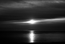 Black and White Photography / by Janet Henze