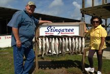 Bolivar Peninsula Texas Fishing / Bolivar Peninsula Texas is on the Beach Side of East Galveston Bay. Location is great for both Beach Front and Bay Fishing Trips from local fishing guides. Crystal Beach Fishing Guides and Charters.