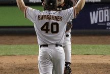 Bay Area Sports / Sports in the San Francisco Bay Area