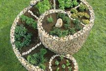 Spiral de ervas
